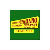 Pagano Domenico